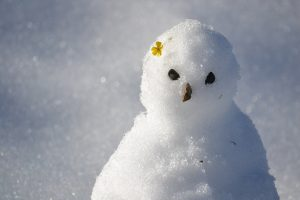 snowman-1227475_1920