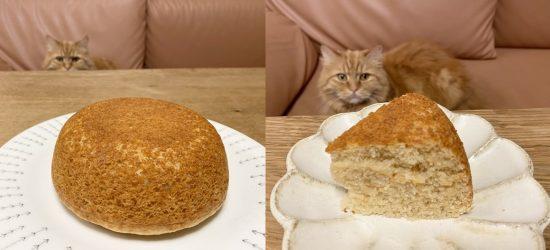 cake_baked