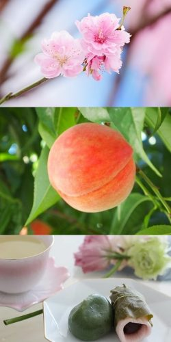 peach-blossom3
